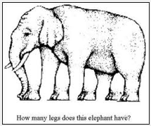 The Infamous Elephant Drawing